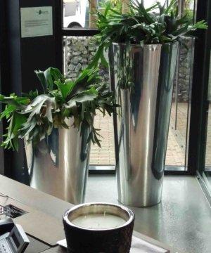 Interieur planten Culemborg