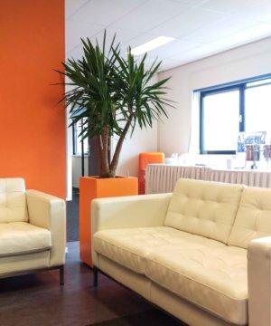Planten op kantoor Nieuwegein